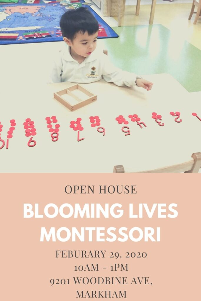 Protected: Blooming Lives Montessori Open House: February 29, 2020